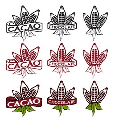 Cacao beans with leaves grunge labels set vector