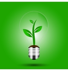 eco bulb with plant green vector image vector image