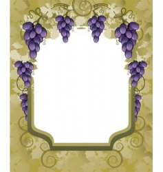 vineyard border vector image vector image