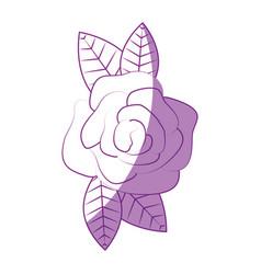 Beautiful flower ornament vector
