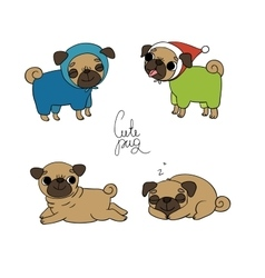 Cute Pugs Pet clothes vector image