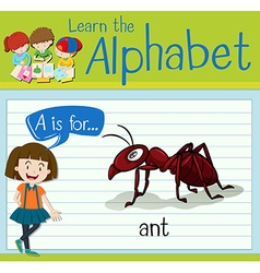 Flashcard letter A is for ant vector image vector image