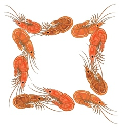 Frame made from prepared shrimps on white vector