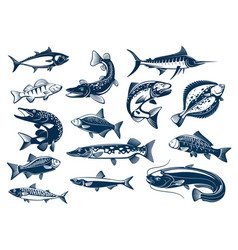 Fishes species isolated icons vector