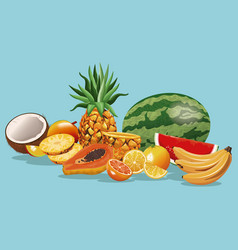 Fruits variety fresh harvest vector