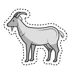 Goat animal farm in the field vector