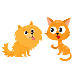 Pomeranian spitz dog and red cat kitten vector
