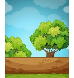 Scene with brick wall and tree vector