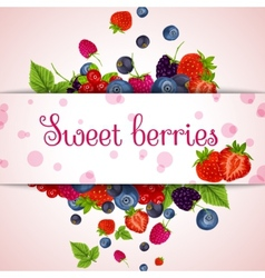 Fresh berries card vector
