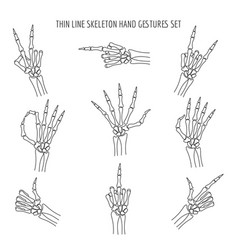 Linear skeleton hands gestures vector