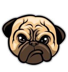 pug dog head vector image vector image