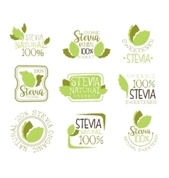 Stevia natural food sweetener additive and sugar vector
