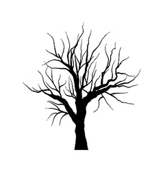 Sketch of dead tree without leaves isolated on vector