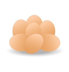 Brown eggs vector image