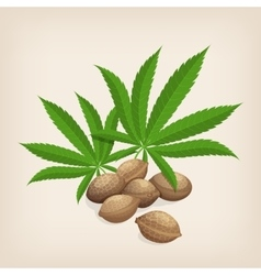 Heap of hemp seeds with leaves vector