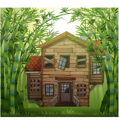 old wooden house in bamboo forest vector image vector image