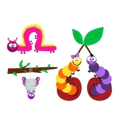 Cartoon caterpillar vector