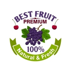Fresh grape and cherry fruit icon vector