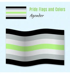 Agender pride flag with correct color scheme both vector