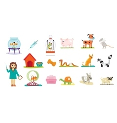 Animal veterinary care flat isolated vector