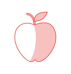 apple fruit sweet shadow vector image