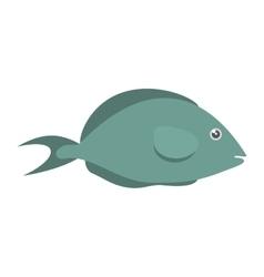 fish aquarium ornament habitat vector image