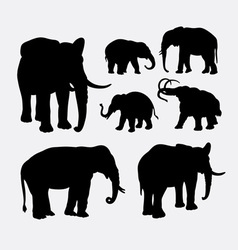 Elephant African wild animal silhouette vector image vector image