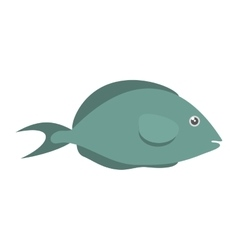 Fish aquarium ornament habitat vector