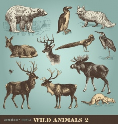 wild animals set 2 vector image