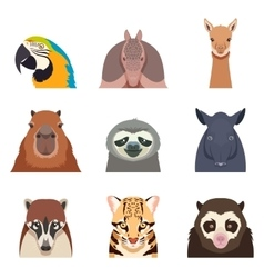 Set of south america animals flat icons vector