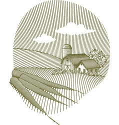 carrot scene vector image