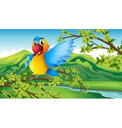A colorful parrot in the forest vector image
