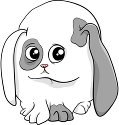 baby bunny cartoon vector image
