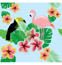 flamingos flower toucan vector image