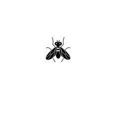 graphics silhouette fly icon vector image