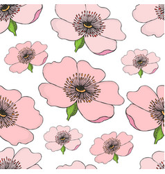 seamless pattern of pink flowering of dog rose on vector image