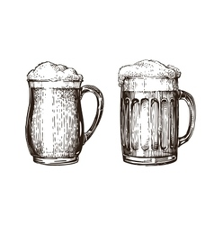 Hand drawn beer mug Elements for design menu vector image