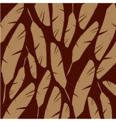 cream feathers on chocolate background vector image