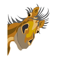 Old horse vector image vector image