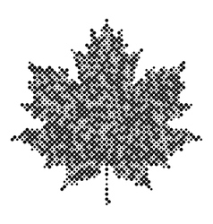 Maple leaf isolated halftone design background vector