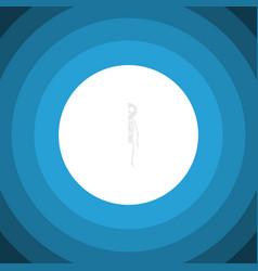 Isolated cranium flat icon skeleton vector