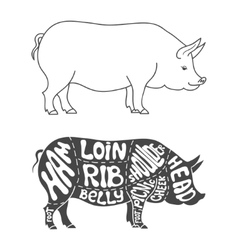 Pork cuts diagram vector