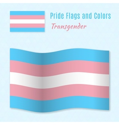 Transgender pride flag with correct color scheme vector