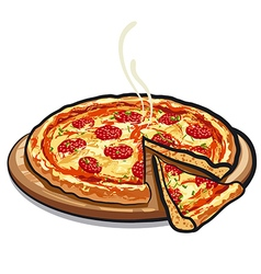 pizza salami vector image