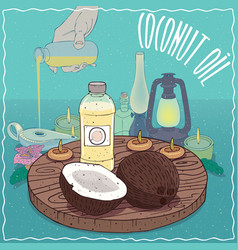 Coconut oil used as fuel for oil lamp vector