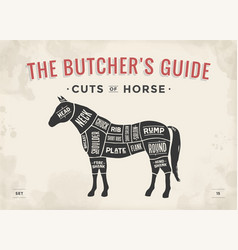 Cut of meat set poster butcher diagram scheme - vector