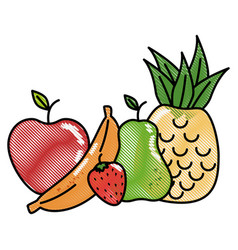 Fruits food organic vector