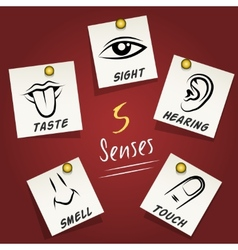 Set of senses icons on sticky notes vector