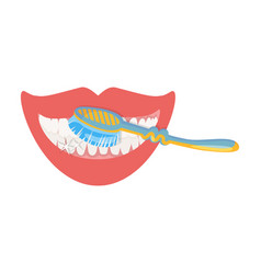 Care brushing teeth with a toothbrush dental vector
