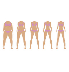 Fat and thin girls vector